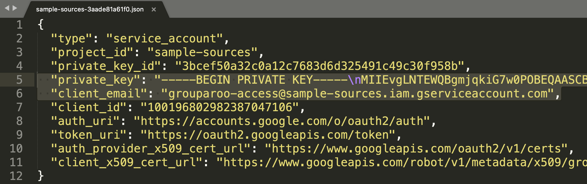 JSON for a Google Service Account key